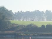 Fields across the Deben