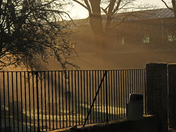 Morning sun through the mist