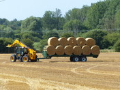 CIRCLES. Tractor, Trailer And Bales