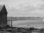 By The River Deben At Woodbridge  Kyson Point