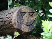 Circle: happy face