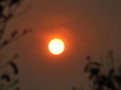 Circle: Desert Sun