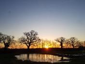 Sunrise near Holton, Suffolk