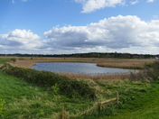 View From the Bank At Blakeney