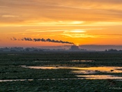 Buckenham Marshes Sunrise