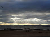 Rays of Exmouth
