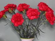 Something Red - Flowers for Valentines