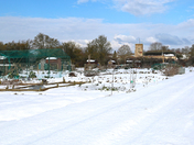 The Allotment Site