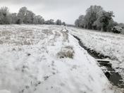 A walk from Claydon to Akenham
