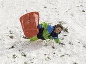 Fun in the snow, Christchurch Park