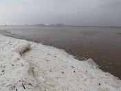 Icy Weston beach