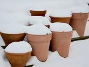 Snow in Ashcombe Park