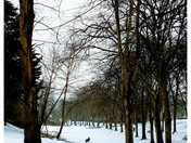Ashcombe Park 3.3.18