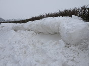 lovely snowdrifts at morley st botolph