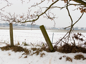 Snowy walk along Marriotts Way