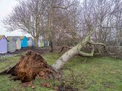 Weather damage in Felixstowe