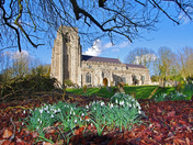 Hitcham Church Pump Snowdrops