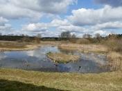 Lackford lakes iwitters meet.