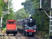 Trains At Holt Station
