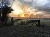 Sunrise ranworth