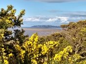 Springtime at Middle Hope with views to Clevedon