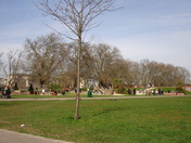 Spring arrives in Barking Park