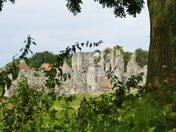 Castle Acre Priory Seen Through The Hedge