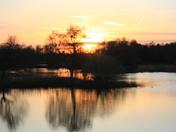 Sunset at Pensthorpe