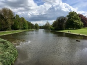 Lake at Verulamium Park in St Albans