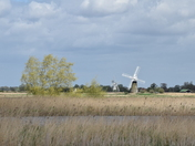 Thurne Windmills