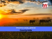 📸 PHOTO CHALLENGE 📸 Countryside