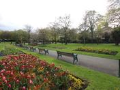 Spring in Grove Park