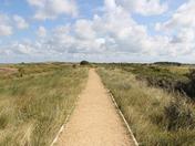 Project 52 - Week 20 - Norfolk Paths