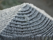 Frosty stump