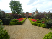 Blickling hall path of tulips