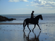 All photos taken in Sidmouth