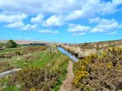 Walk on Dartmoor