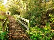 Norfolk Pathway