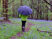 Walk in the rain :)
