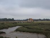 Thornham old harbour