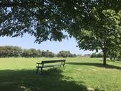 Easton Park x 10