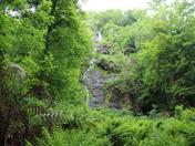Canonteign Falls