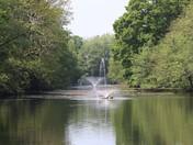 Gunton Hall fishing lake