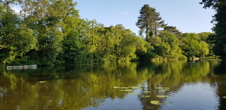 Ham Green Lake