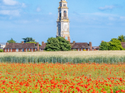 RHS Clock Tower and poppies