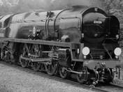 Vintage Steam.