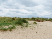 NORFOLK BEACHES, BRANCASTER