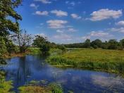 Earsham Wetland Centre