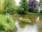 River Wensum At Sculthorpe Mill
