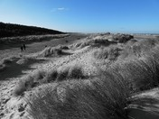 Photo Challenge: Norfolk Beaches